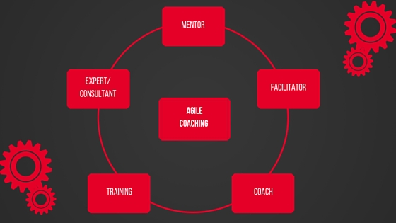 The Agile Coaching Process